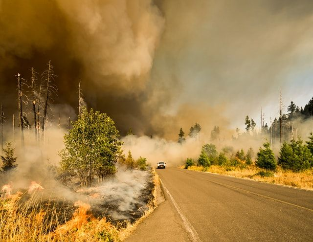 September Update: Climate change increases the risk of wildfires
